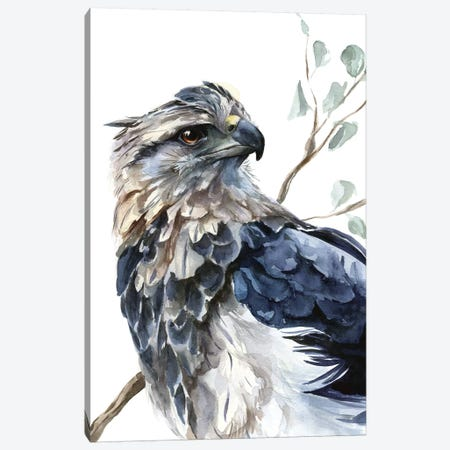 Eagle Canvas Print #KIB3} by Kira Balan Art Print