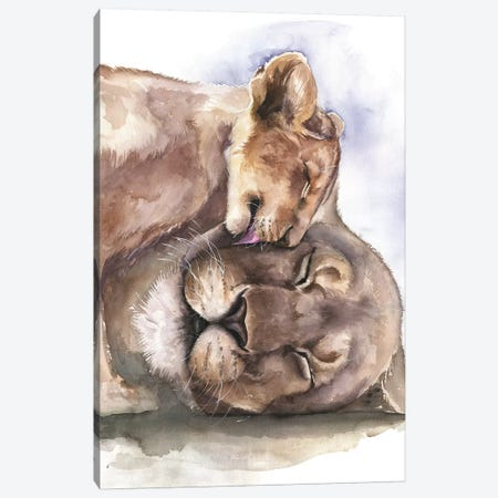 Happy Lions Canvas Print #KIB40} by Kira Balan Canvas Art
