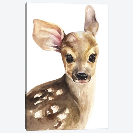 Deer Canvas Print #KIB45} by Kira Balan Canvas Print