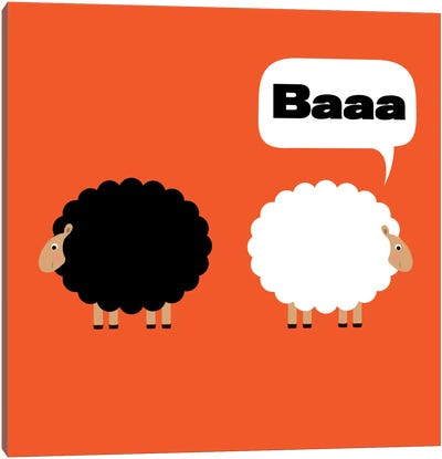 Baaa (Black & White Sheep) by 5by5collective Canvas Art