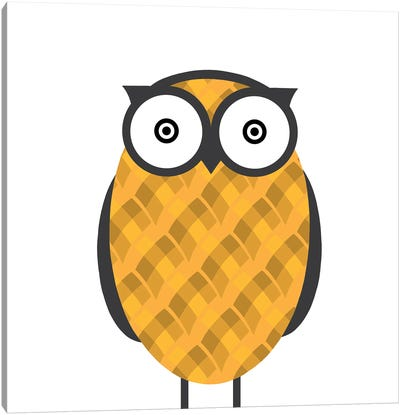 Owl Orange Canvas Art Print