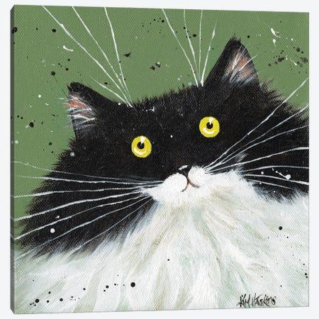 Tuxedo On Pea Green Canvas Print #KIH118} by Kim Haskins Canvas Artwork