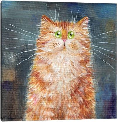 Ginger Cat On Denim Canvas Art Print