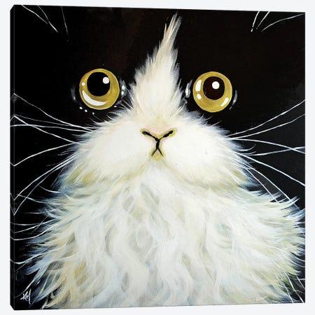 Gatoula Canvas Print #KIH23} by Kim Haskins Canvas Wall Art