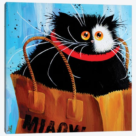 Miaowbag Canvas Print #KIH40} by Kim Haskins Canvas Art