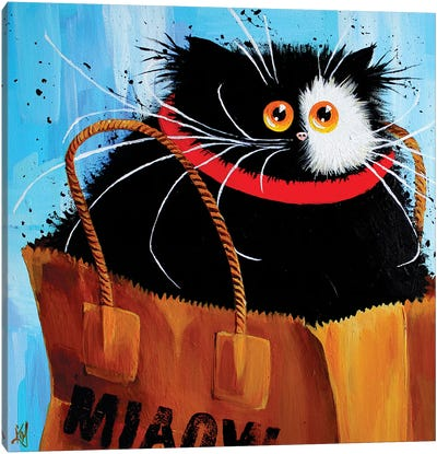 Miaowbag by Kim Haskins Canvas Art Print