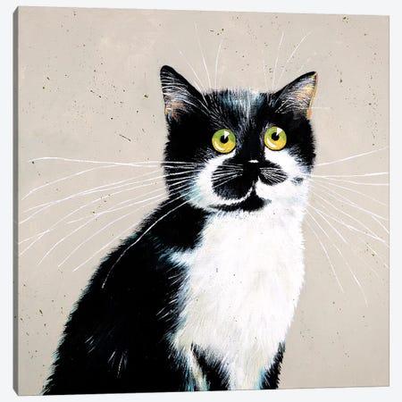 Micheles Bailey Canvas Print #KIH41} by Kim Haskins Canvas Art
