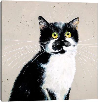 Micheles Bailey Canvas Art Print