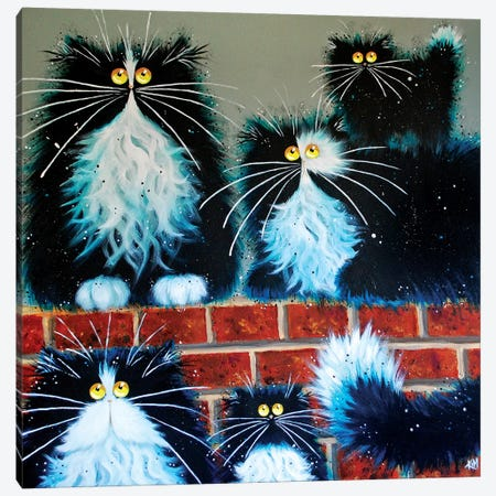 Wall For Cats Canvas Print #KIH61} by Kim Haskins Canvas Wall Art