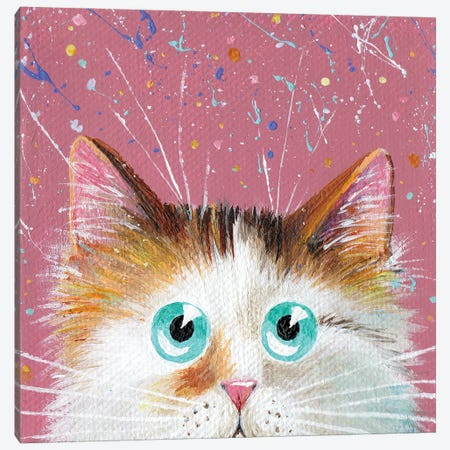 Peeping Tortie On Splattered Pink Canvas Print #KIH70} by Kim Haskins Canvas Art Print