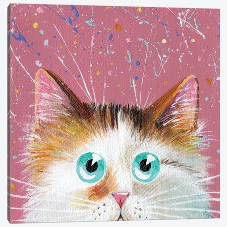 Peeping Tortie On Splattered Pink Canvas Print #KIH70} by Kim Haskins Canvas Art Print