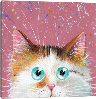 Peeping Tortie On Splattered Pink Canvas Art Print