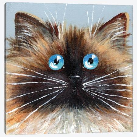 Choc Seal Point Canvas Print #KIH75} by Kim Haskins Canvas Artwork