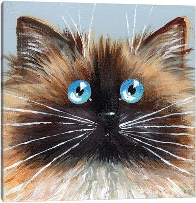 Choc Seal Point Canvas Art Print