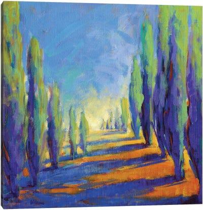 Colors Of Summer VIII Canvas Art Print