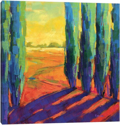 Colors Of Summer III Canvas Art Print