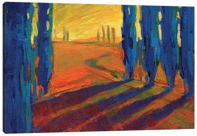 Colors Of Summer II Canvas Art Print