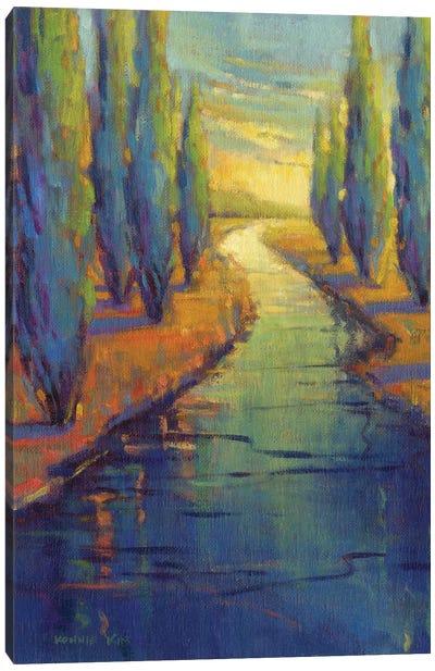 Cypress Reflecton Canvas Art Print
