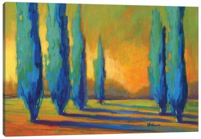 Cypress Road V Canvas Art Print