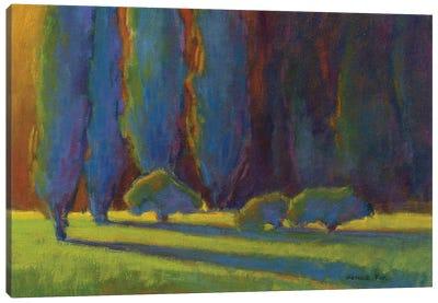 Into The Light Canvas Art Print