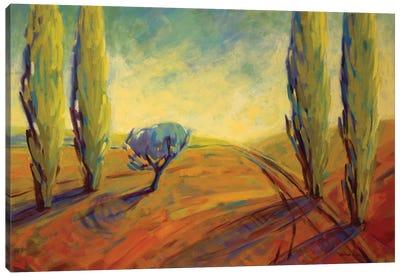 Where Evening Begins II Canvas Art Print