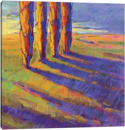 Colors Of Summer V Canvas Art Print