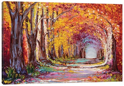 Into The Woods II Canvas Art Print