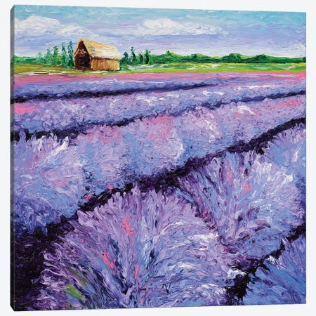 Lavender Breeze Triptych Panel I Canvas Print #KIM15} by Kimberly Adams Canvas Print