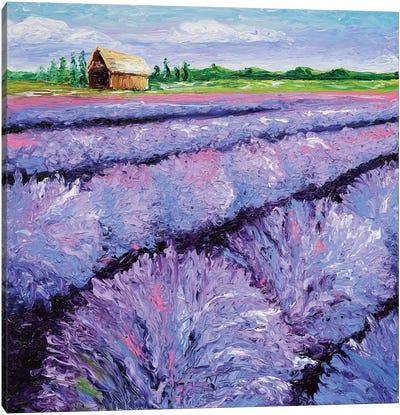 Lavender Breeze Triptych Panel I Canvas Art Print