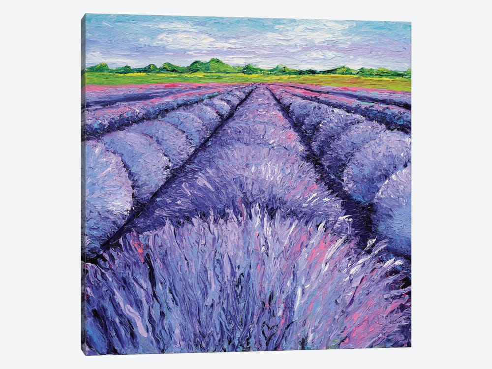 Lavender Breeze Triptych Panel II by Kimberly Adams 1-piece Canvas Print