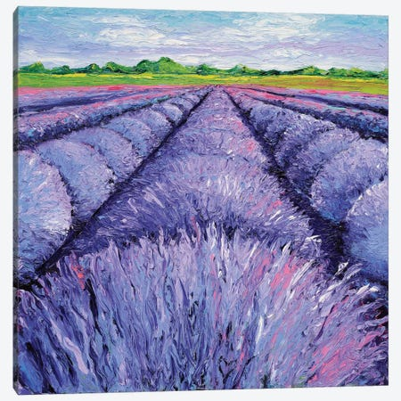 Lavender Breeze Triptych Panel II Canvas Print #KIM16} by Kimberly Adams Canvas Art Print