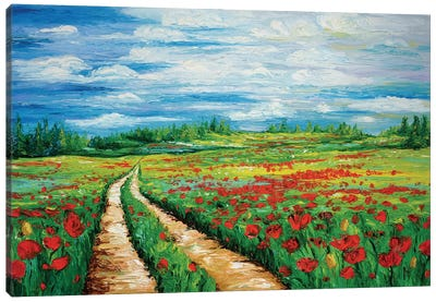 Pathway To Tranquility Canvas Art Print