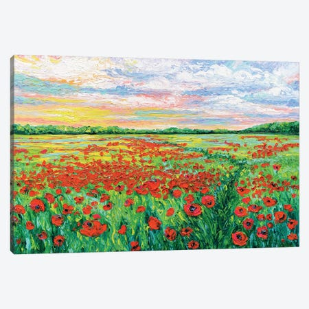 Poppied Path Canvas Print #KIM20} by Kimberly Adams Art Print