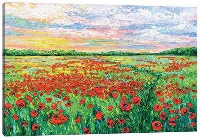 Poppied Path Canvas Art Print