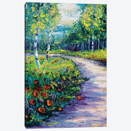 Radiant Path Canvas Print #KIM21} by Kimberly Adams Canvas Print