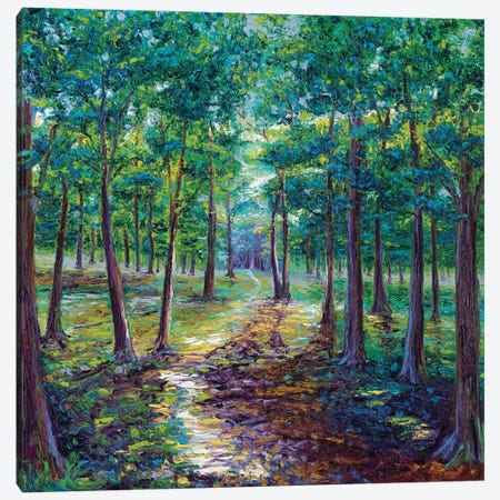 Under The Canopy Canvas Print #KIM27} by Kimberly Adams Canvas Artwork