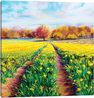 Golden Fields Canvas Art Print
