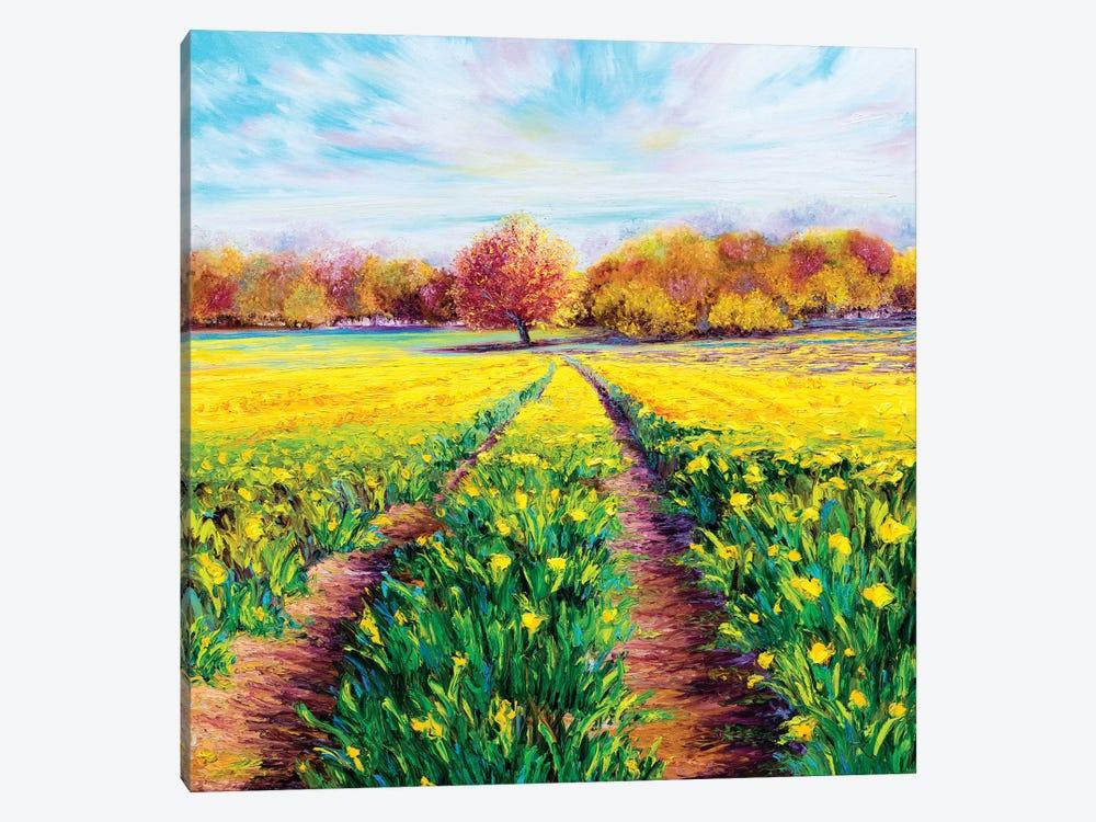 Golden Fields by Kimberly Adams 1-piece Canvas Art