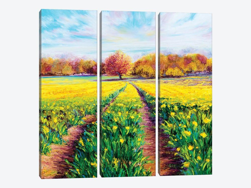 Golden Fields by Kimberly Adams 3-piece Canvas Wall Art