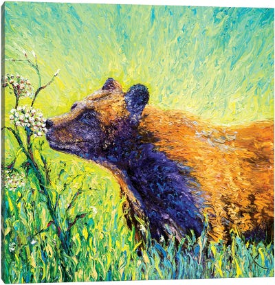 Hemlock Bear Canvas Art Print