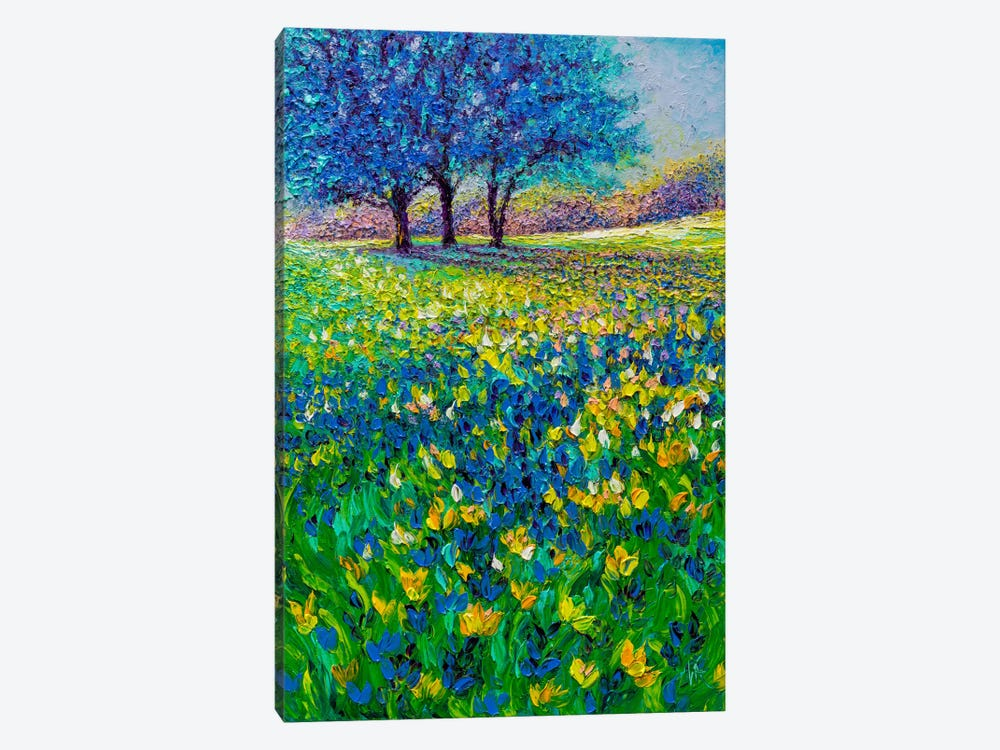 Azure Morning by Kimberly Adams 1-piece Canvas Artwork