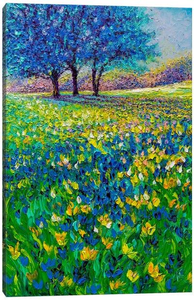 Azure Morning Canvas Art Print