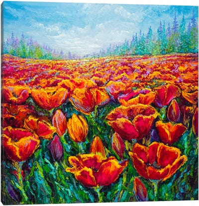 Tulip Time Canvas Art Print