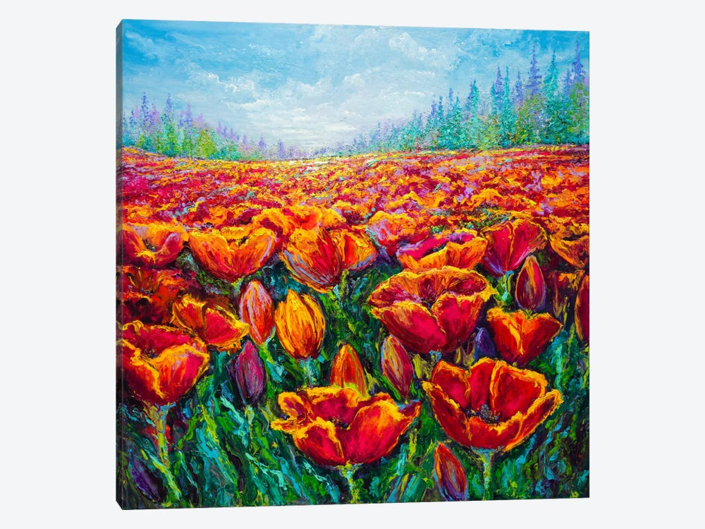 Tulip Time by Kimberly Adams 1-piece Canvas Print