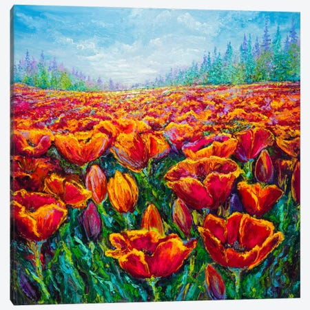 Tulip Time Canvas Print #KIM41} by Kimberly Adams Canvas Print