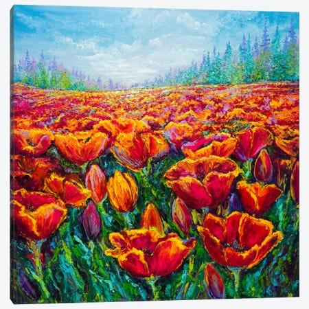 Tulip Time Canvas Print #KIM41} by Kimberly Adams Canvas Print