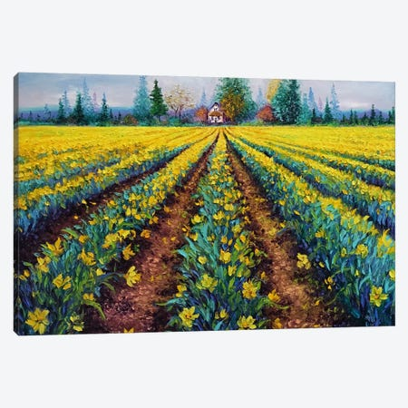 Valiant Field Of Daffodils Canvas Print #KIM44} by Kimberly Adams Canvas Wall Art