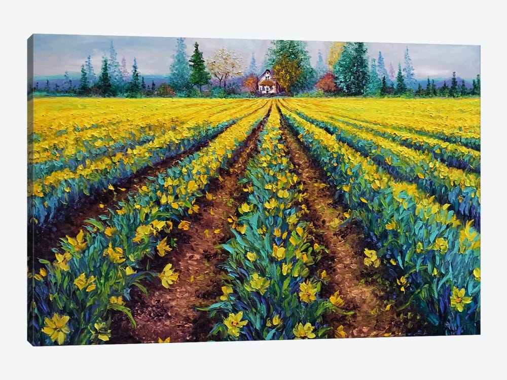 Valiant Field Of Daffodils by Kimberly Adams 1-piece Canvas Art