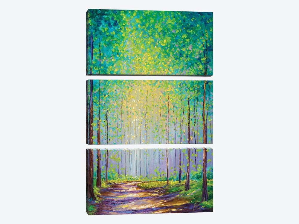 Afternoon Stroll by Kimberly Adams 3-piece Canvas Artwork