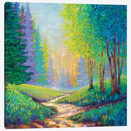 Into The Forest Canvas Print #KIM59} by Kimberly Adams Canvas Art